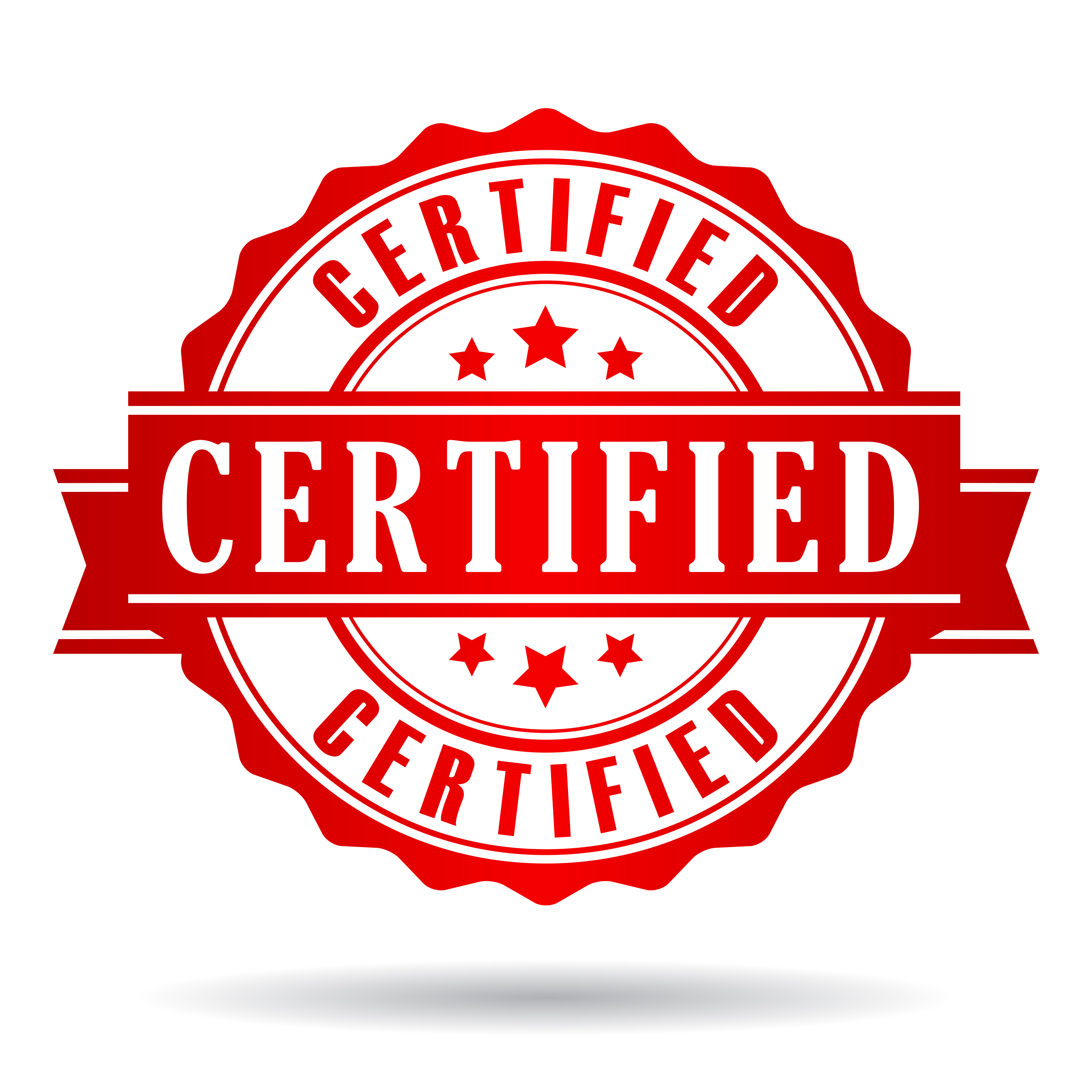 Mbe dbe certifications bernardjohnsongroup a minority business is a socially and economically disadvantaged small business concern organized for profit as defined under the small business act xflitez Gallery